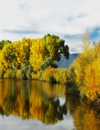 Photo of the Carson River in Autumn